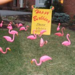 Flamingo Flocking Yard Card DSC00213
