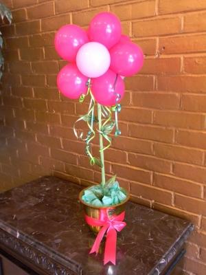 balloon_flower