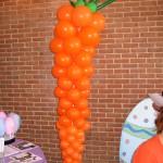 Food Carrot2005
