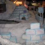 Antarctica Alaska Igloo Festival of Trees (22)