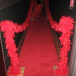 Fashion Show  Rock StarRunway Red Carpet Fashion Party (1)
