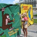 Feed the Monkey IMG_1936
